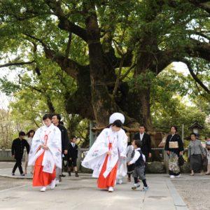 2021秋☆大麻比古神社本殿挙式