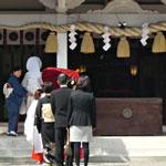 忌部神社 挙式