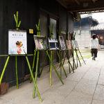 徳島鳴門花嫁展示写真