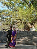 徳島の神社婚礼